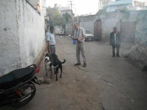 vet and locals
